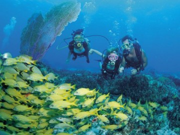 636016992881457860  The  Bahamas  Scuba  Diving Credit  Grand  Isle  Resort